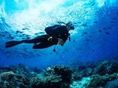 Taucherin in einem tropischen Riff mit blauem Hintergrund