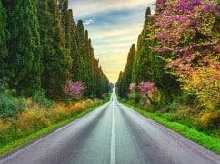 Autorundreise